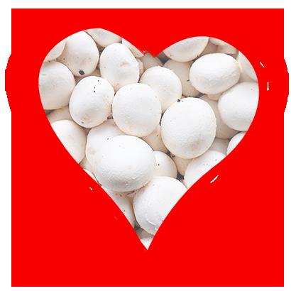corazon-champiñon